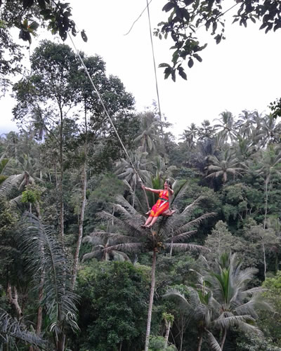 Ubud Jungle Swing